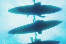 Surfing / by Adrea Taryn