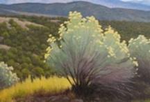 New Mexico / by Patricia Montoya