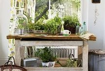 Potting Benches / by Debra Oliver (Common Ground)