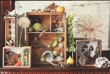 Seasonal Vintage Displays