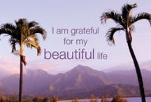 Life 101. / Living life with a grateful heart! / by Susan Meyer-Silvas