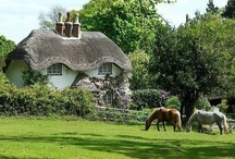 English Country / by Debra Oliver (Common Ground)