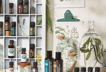 Health & Wellness: Oils / Collecting/compiling ideas on what I can do with essential oils