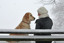 Man's Best Friend  / by Carolyn Martin