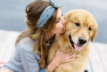 Puppy Love / by Cyd Converse | The Sweetest Occasion