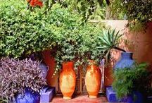 Southwest Curb Appeal / String up some lights, decorate the patio and turn your backyard into your oasis.