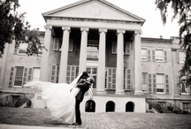 Our Wedding! / Charleston Wedding / by Jessica Goodwin