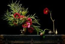 Floral arrangements / by Michelle Delmore