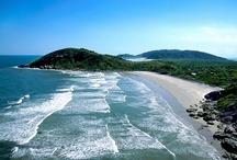 """Süden (Região Sul)  / """"Der Süden ist die kleinste Region Brasiliens. Die klimatischen Verhältnisse entsprechen etwa denen Südeuropas. Die Region zeigt deutliche kulturelle Einflüsse von deutschen und italienischen Einwanderern, die sich bevorzugt in diesem Gebiet niederließen. Etwa 85 % der Bewohner sind Weiße.""""  (Paraná, Rio Grande do Sul und Santa Catarina)  --- Quelle: Wikipedia"""