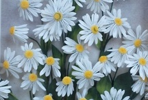 Pictures about Daisy and Chrysanthemum