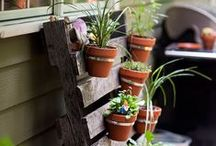 DIY Patio Projects / We spend summers out in the backyard so I'm on the hunt for some AMAZING DIY Patio Projects! / by SoberJulie