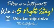 Win a Stay to Aruba! / Find out how you can win a stay with us in Aruba by following our contest board! More info is available at www.diviaruba.com or www.tamarijnaruba.com