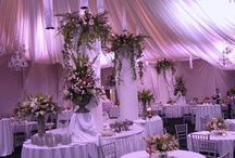 Receptions / by Lakeside Weddings