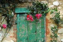 Doors, Windows & Peeling Paint.