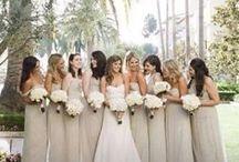 bridesmaids & groomsmen / by Lindsay Valentino