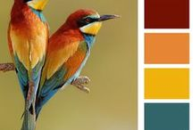 Share Your Favorite Colors / Here are some of Pinterest's most popular color palettes and color images. They all have been pinned  thousands of times. Please scroll down to take a look. If you are inspired by any, please feel free to pin them to your own board to have them in your own collection. And, if you have ideas that will help others, please add your comments.