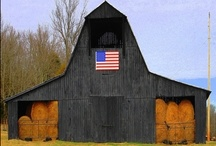 Barns / Functional, quaint, rustic and charming, they tie us to our rural roots. / by Leslie Aitken
