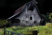 At The Farm / by Vivian Kasey