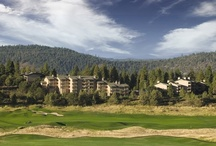 Oregon Nature Running Wild / Enjoy a winter or summer mountain vacation with the family at WorldMark Running Y. Hiking, fishing, biking, wilderness excursions and golfing are among some the outdoor activities at this Oregon resort.