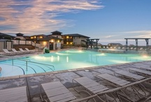 California Dreaming / Whether you are looking for a mountain vacation to ski, hike or fish, or a beach vacation to relax oceanside, the California WorldMark resorts are sure to provide the perfect vacation experience that you are searching for.   / by WorldMark by Wyndham