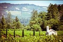 Favorite Places - Wine Country California