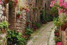Favorite Places - France