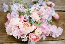 Studio 24 - Pink wedding