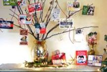 Holiday Cards Display / by Shutterfly