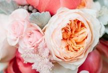 Coral and peach wedding