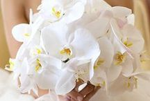 Gorgeous Bouquets and Boutineers / by Adiamor