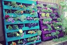 DIY Garden Projects / Save money and add a personal touch to your garden with these DIY projects!