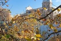 Rome in Autumn / The best things to do and eat in the city of Rome in Autumn
