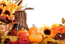 Thanksgiving Activities / Resources for celebrating Thanksgiving in the classroom. / by Lesson Planet