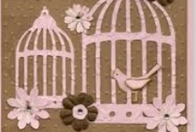 Bird Cages  / by Teresa Pannell