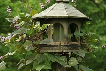 Bird Feeders/Houses / by Teresa Pannell