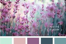Color board (paint and accent colors) / by Vanessa Murguia