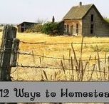 Survival: Homesteading & Retreats / >> rethinksurvival.com/pinterest << Homesteading and retreat references for emergency preparedness, survival and self-sufficiency.