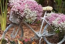 Bikes & Bouquets / ~ I ride my bike, I roller skate, don't drive no car.  Don't go too fast, but I go pretty far~           Janis Joplin / by Keller Hastings