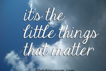 LITTLE THINGS MEAN SO MUCH / Life is too short to not appreciate all of the amazing little blessings that we have. Gratitude is key to a happy life. #happy #gratitude #blessings