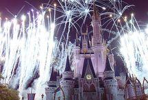 Disney World - Orlando, FL
