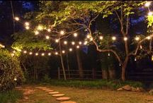 Patio and Deck Lighting Ideas / Breathe new life into your outdoor spaces with gorgeous patio lighting and string lights ideas! Wrap deck railings, hang lights from the ceiling or create a canopy of bright illumination across your backyard patio. There is no shortage of beautiful ways to dress up your outdoor spaces with lighting!  / by Christmas Lights, Etc