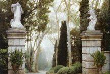 Garden Dreams... / by John Buckley