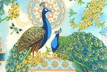 For the Love of Peacock / by Anne Karakash