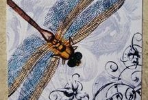 Dragonfly Reveries ❦ /  