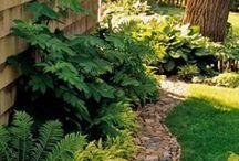 Garden Spaces / by Ann Riley