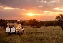 Concierge Tips: Africa / Let us show you Africa as you've never seen it before. The ultimate insiders, our team of concierges have curated these custom experiences just for you.  / by Four Seasons Hotels and Resorts