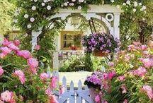 Home: The Garden