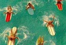 Aloha !!!!  Surf !!!!! / by Jules Font
