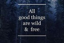 W I L D / Outdoor Activities, Camping, nature, outdoor sports from my blog
