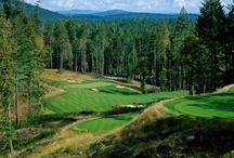 Let's Go Golfing!